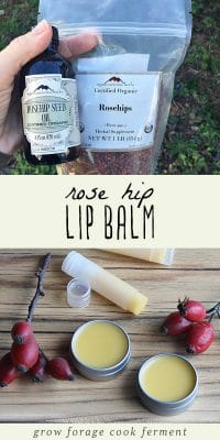 Homemade rose hip lip balm on a wood background, a bag of dried rose hips, and a bottle of rose hip seed oil.