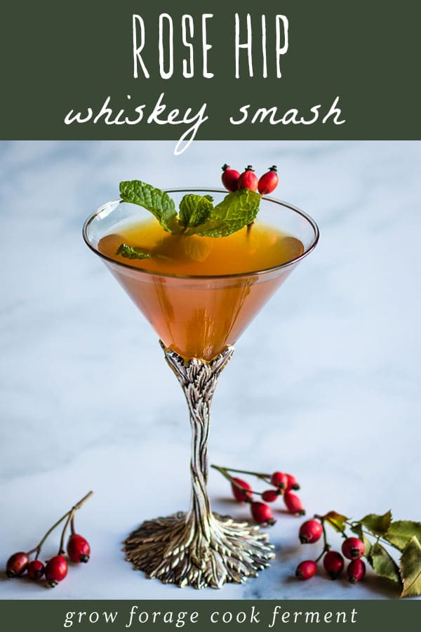 rose hip whiskey smash cocktail in a martini glass
