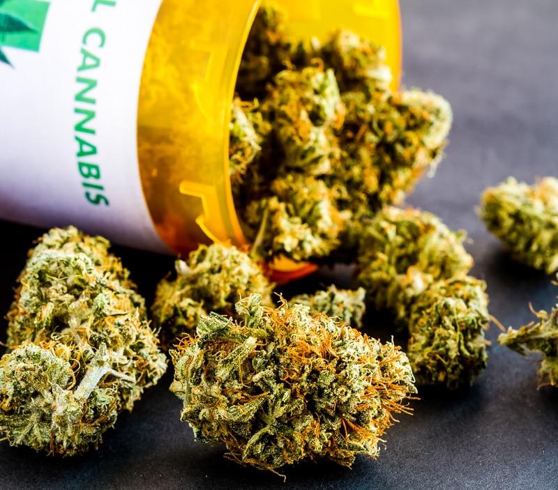 medical cannabis cbd buds in a prescription bottle