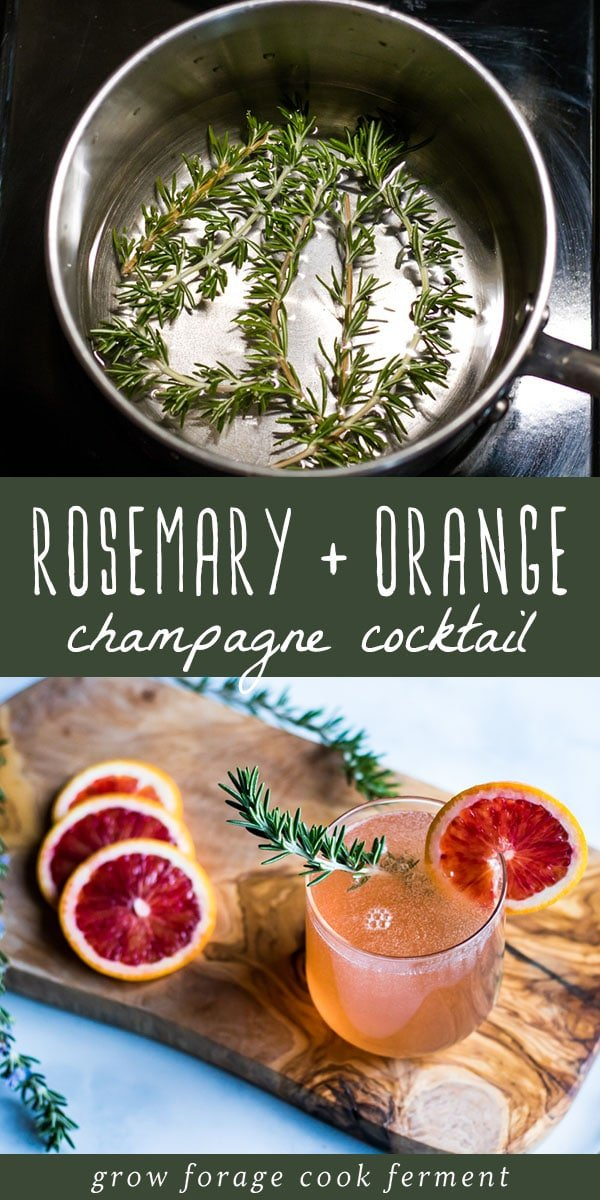 This rosemary champagne cocktail with blood orange is a delicious and festive drink! Get the benefits of fresh rosemary in this beautiful holiday cocktail. #rosemary #champagne #cocktail #holiday #drink