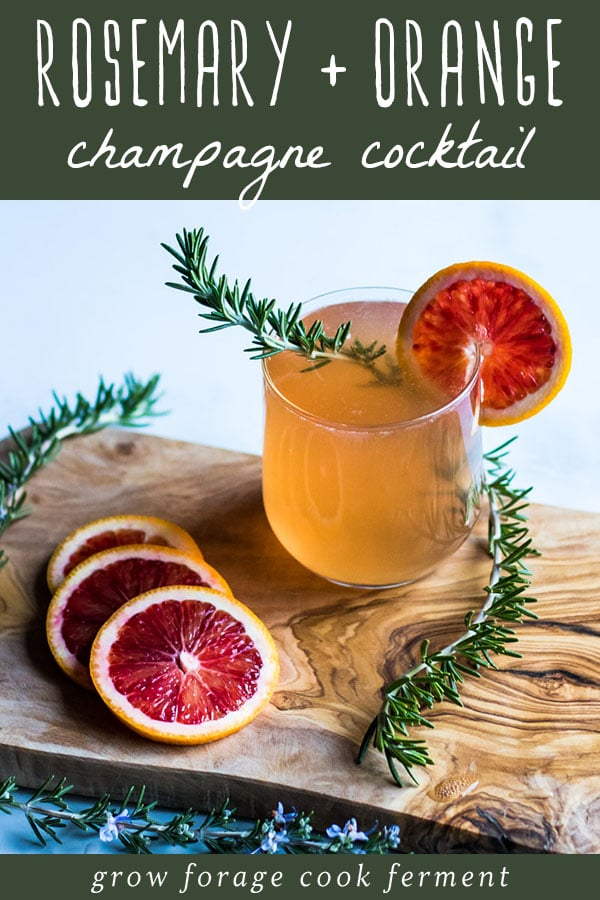 rosemary and blood orange champagne cocktail