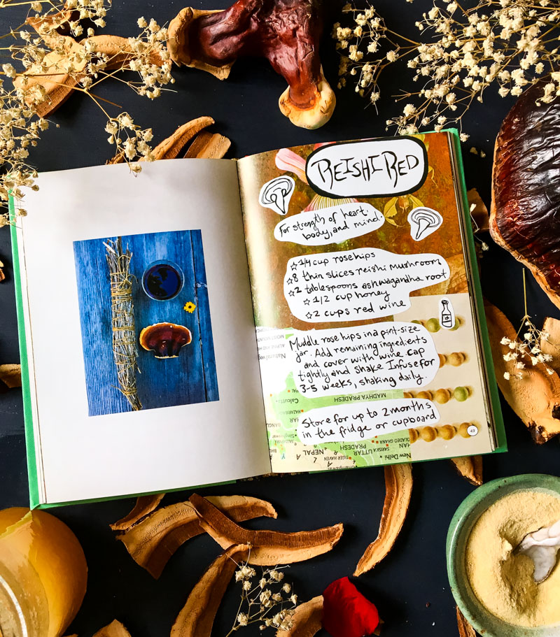 the book blotto botany open to the reishi red recipe