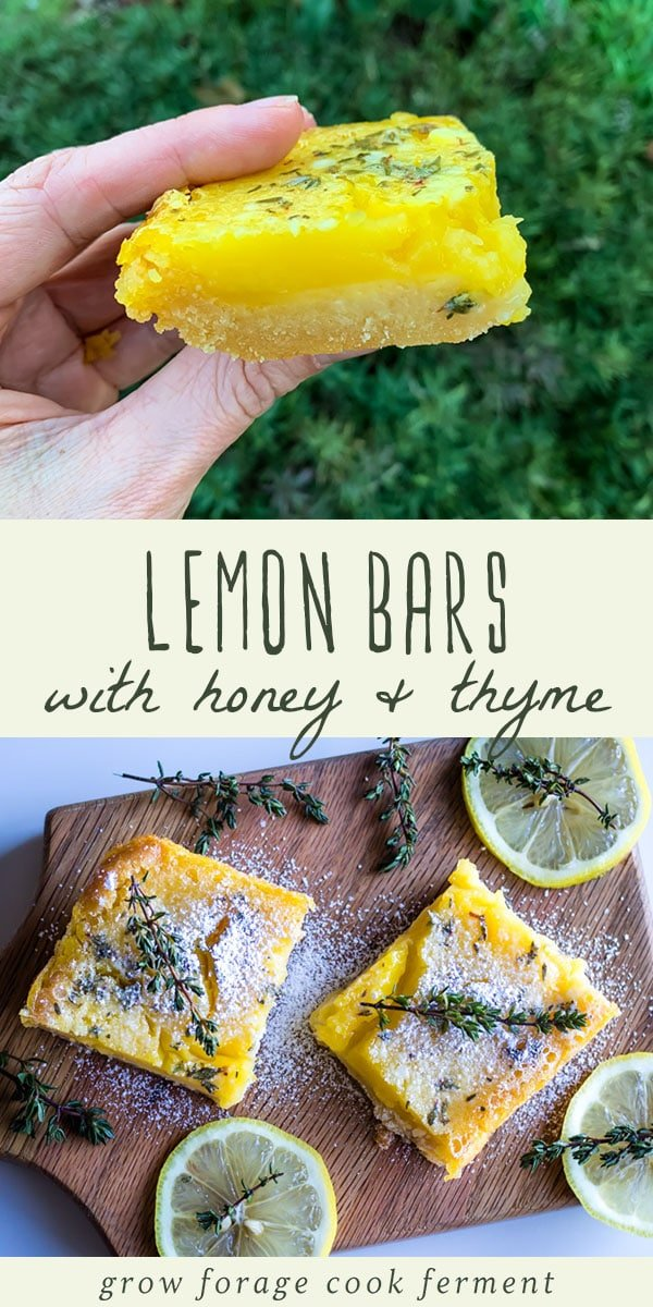 These delicious lemon bars with honey and thyme are gluten free, paleo, and made without refined sugar. They are the perfect herbal dessert to make during citrus season! #lemonbars #lemondessert #honey #thyme #glutenfree #paleo
