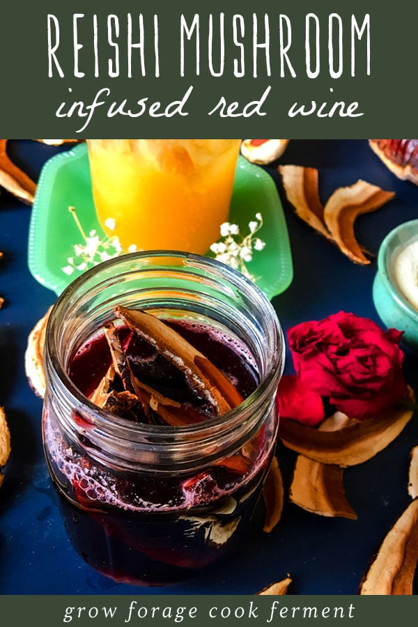 reishi mushroom slices infusing in a jar of red wine