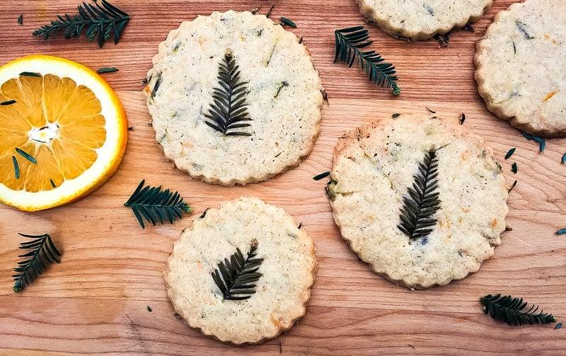 conifer shortbread cookies