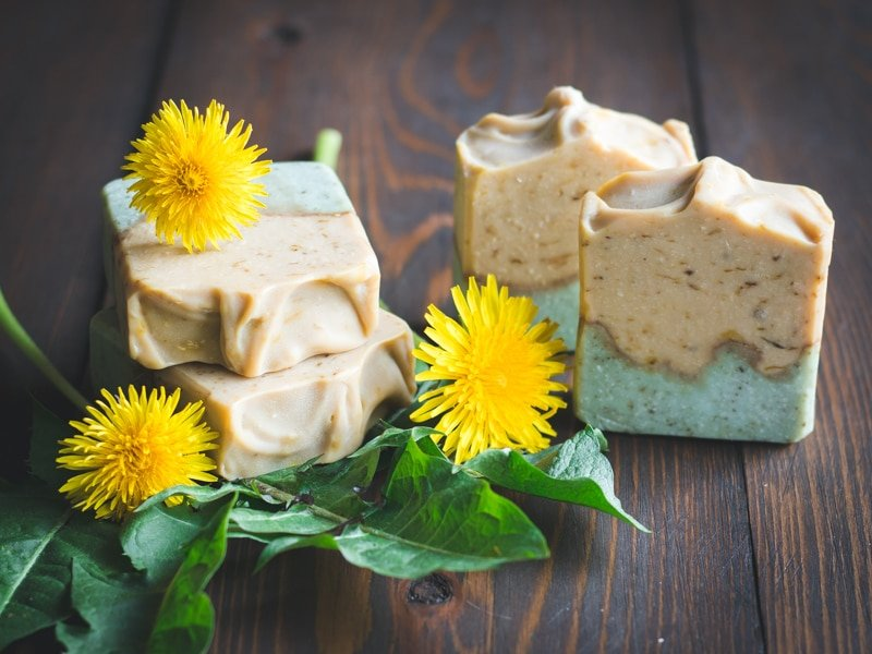 dandelion soap made with the whole plant