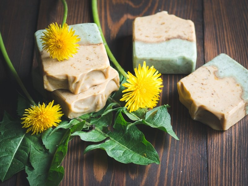bars of dandelion soap on a wooden table with dandelion flowers and leaves