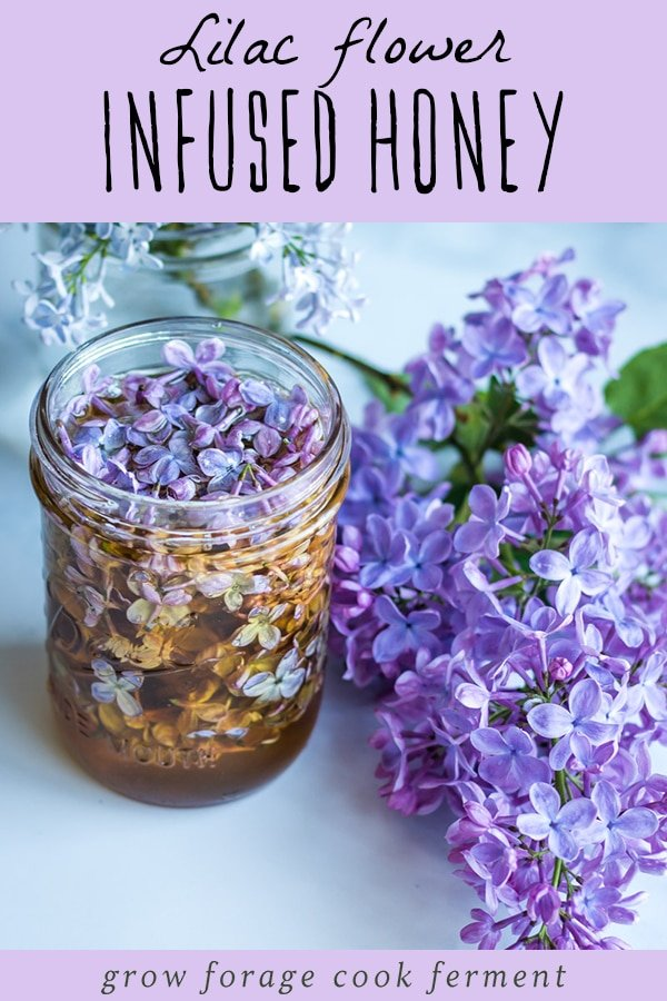 a jar of lilac flower infused honey with a lilac blossom on a table