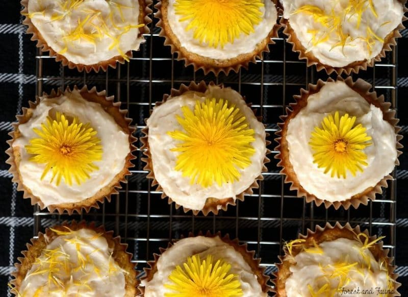 dandlelion cupcakes topped with dandelion blossoms