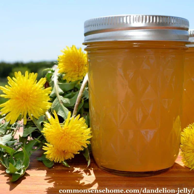 a mason jar of dandelion jelly