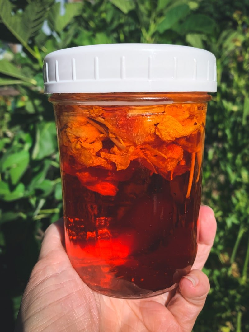 a jar of bright red nasturtium vinegar