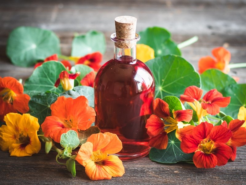 a bottle of nasturtium vinegar with a cork
