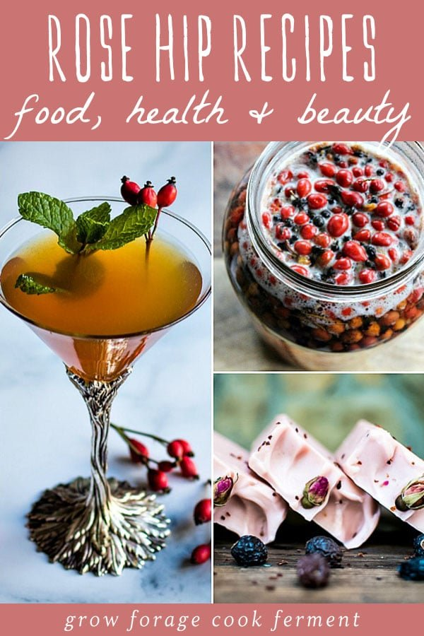 a collage of rose hip recipes