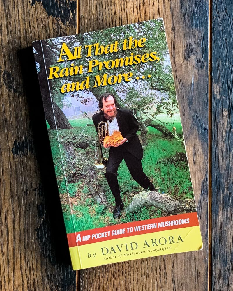 all that the rain promises and more mushroom foraging book