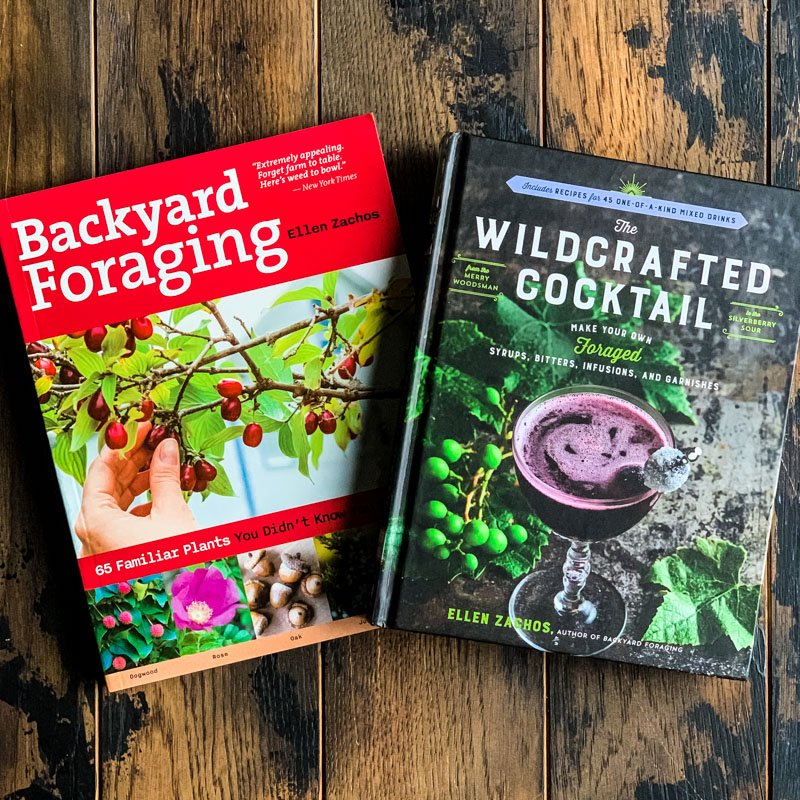 foraging books by ellen zachos