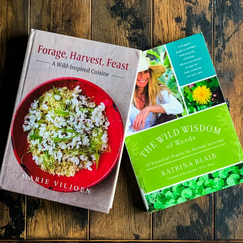 forage, harvest, feast and the wild wisdom of weeds