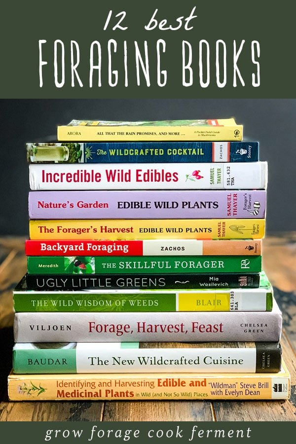 stack of 12 best foraging books