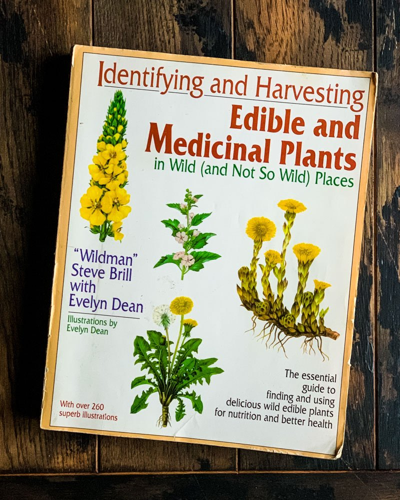identifying and harvesting edible and medicinal plants book