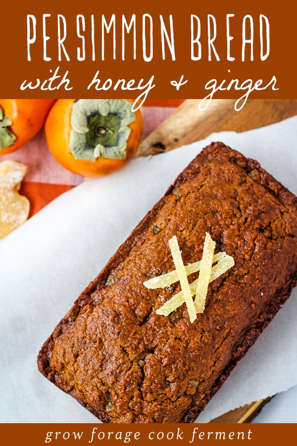 persimmon bread with honey and ginger