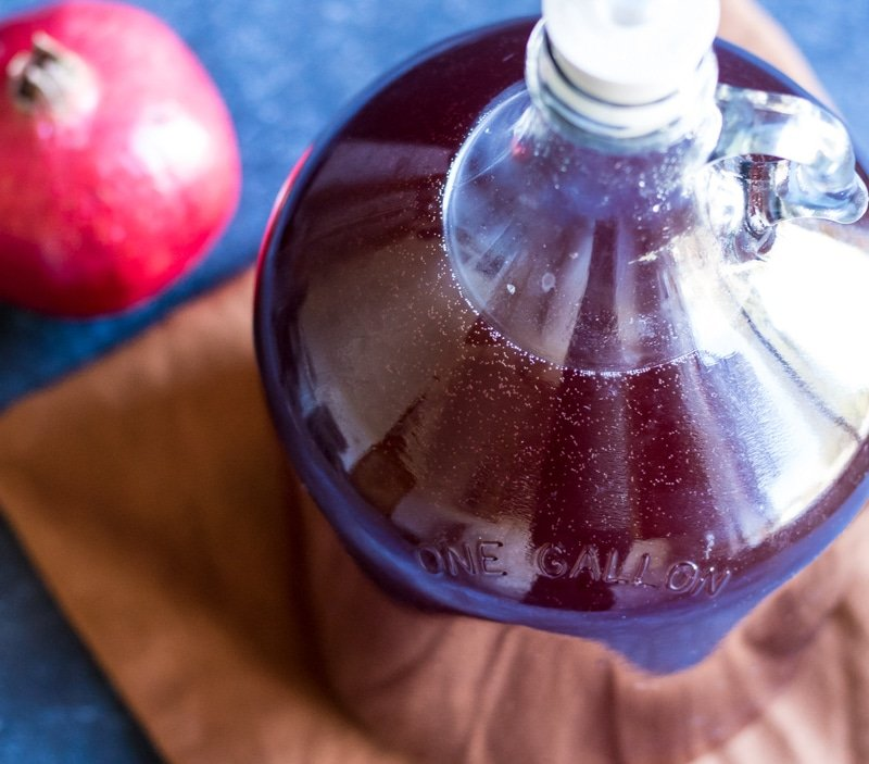 pomegranate wine bubbles in a gallon jug