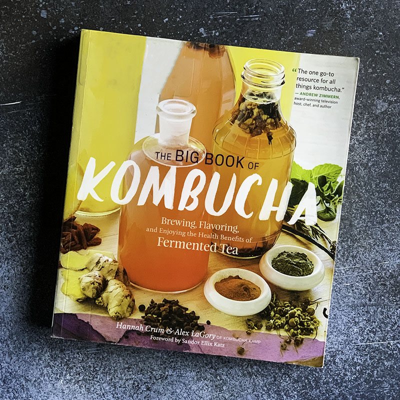 the big book of kombucha book