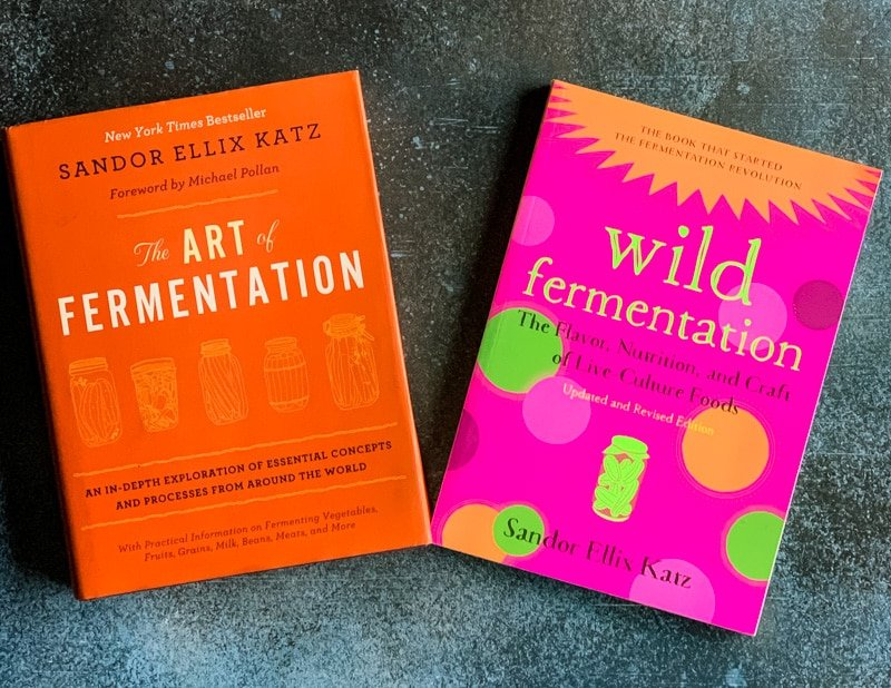 two fermentation books by sandor katz