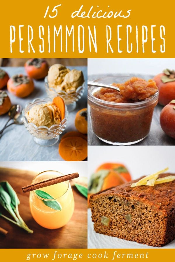 a collage of persimmon recipes