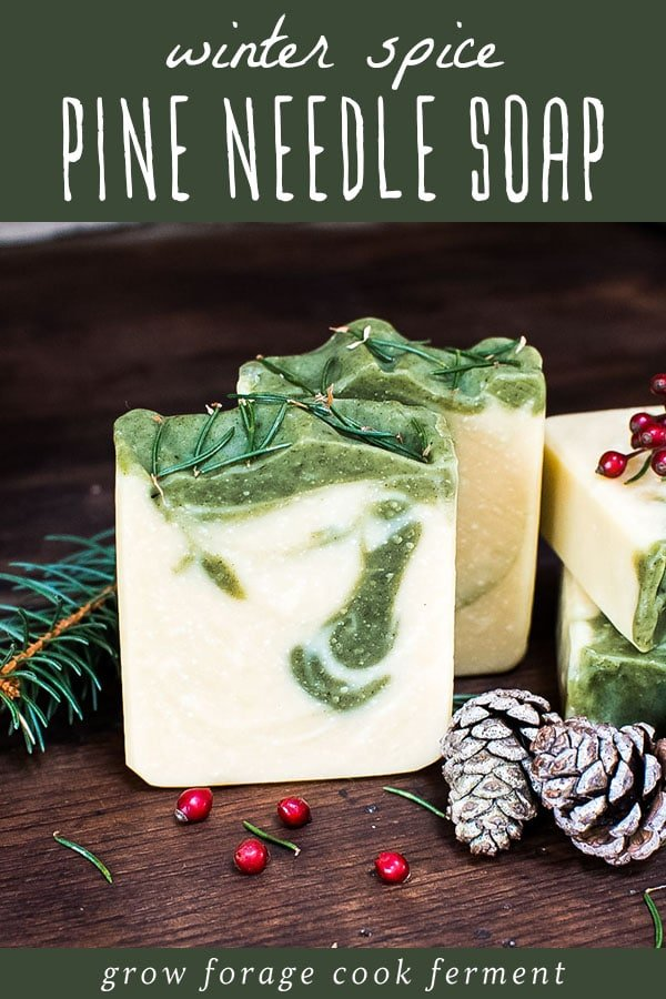 winter spice pine needle soap