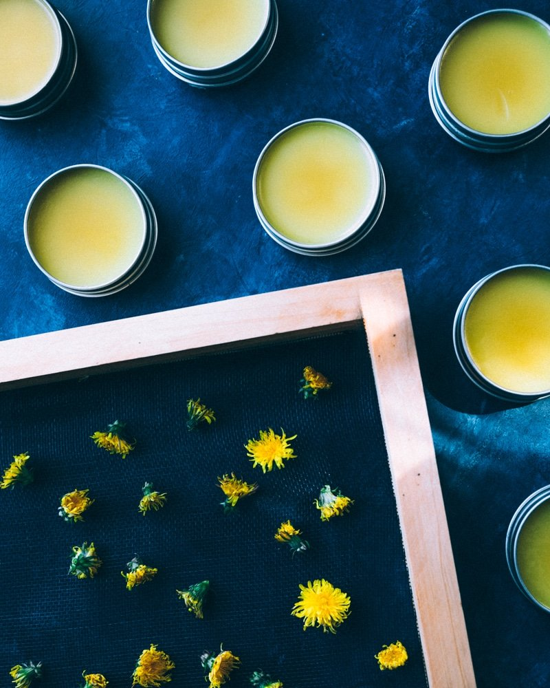 dandelions on a drying screen with tins of salve