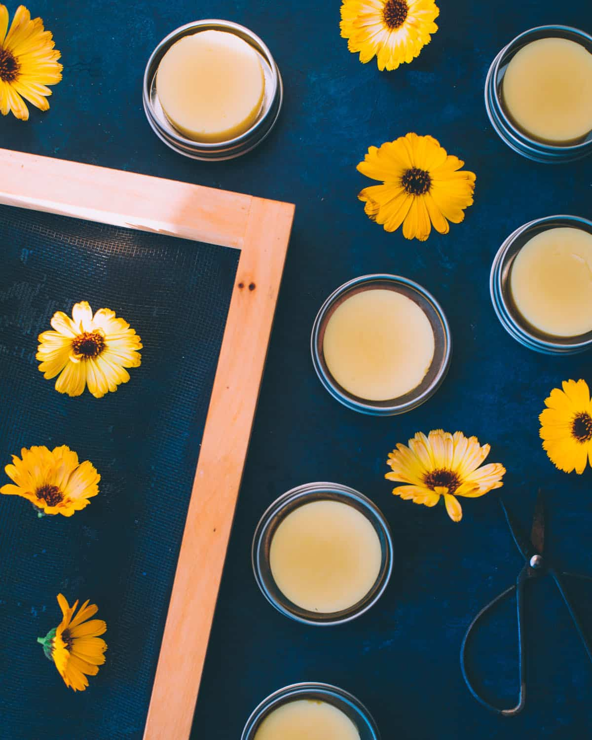 calendula lotion bars with flowers and scissors