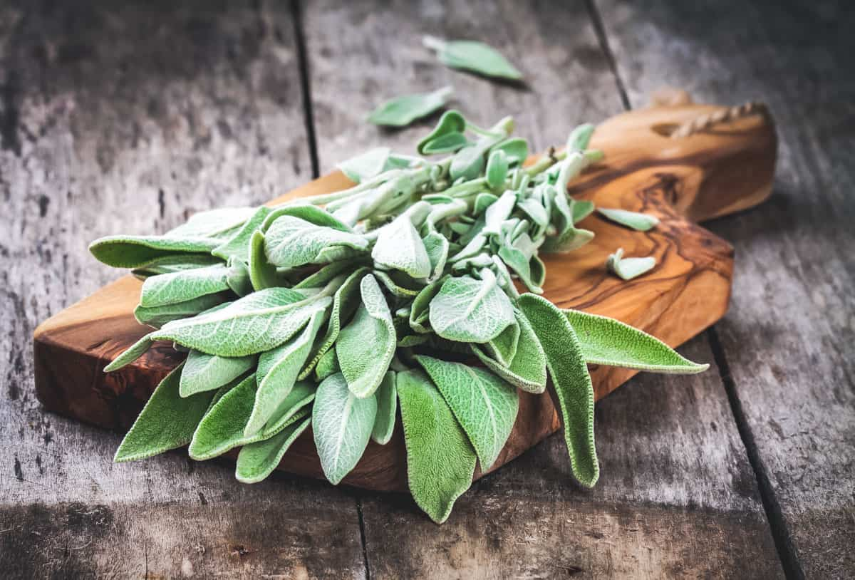 fresh sage on a cutting board