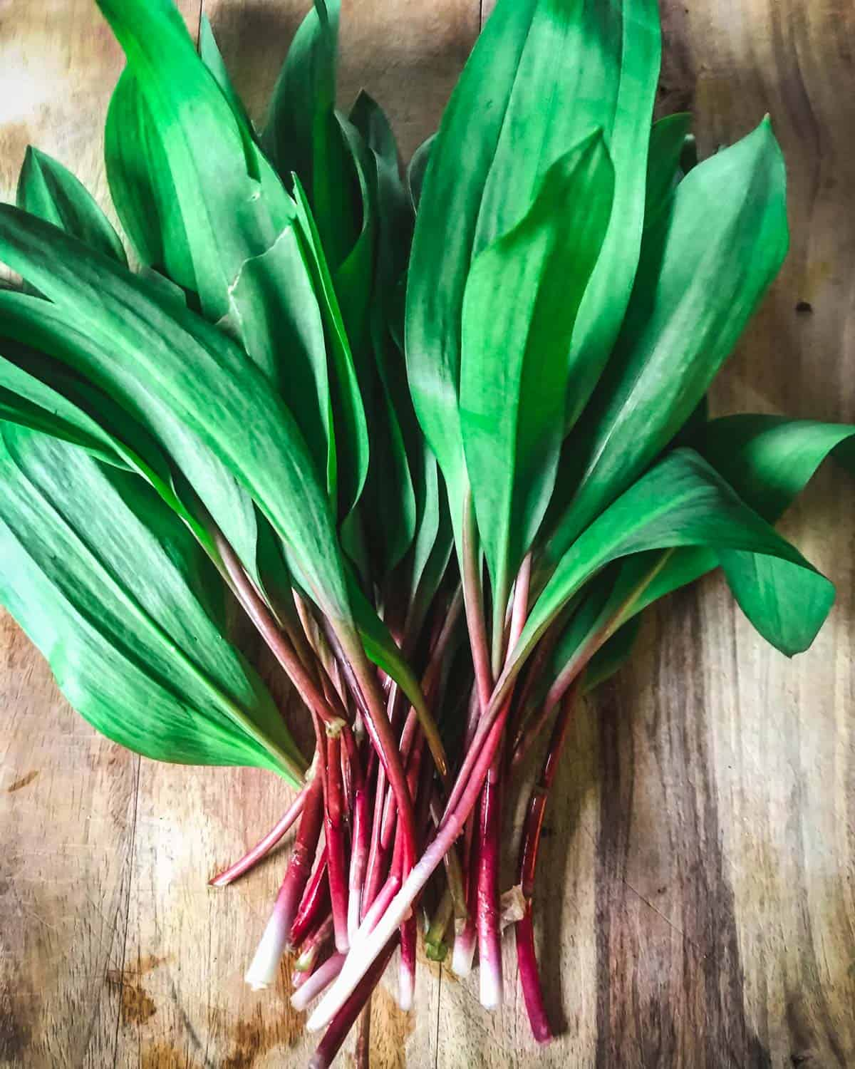 foraged ramps on a cutting board