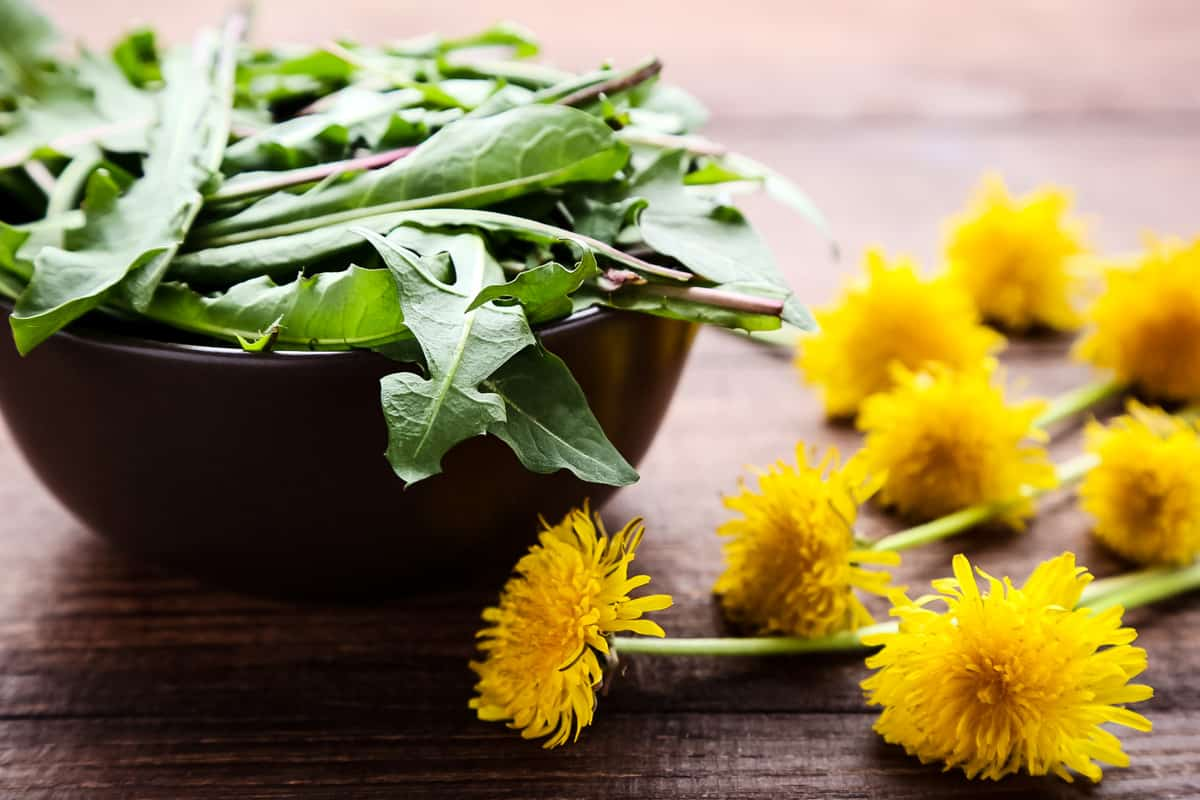 a bowl of dandelion greens with flowers nearby