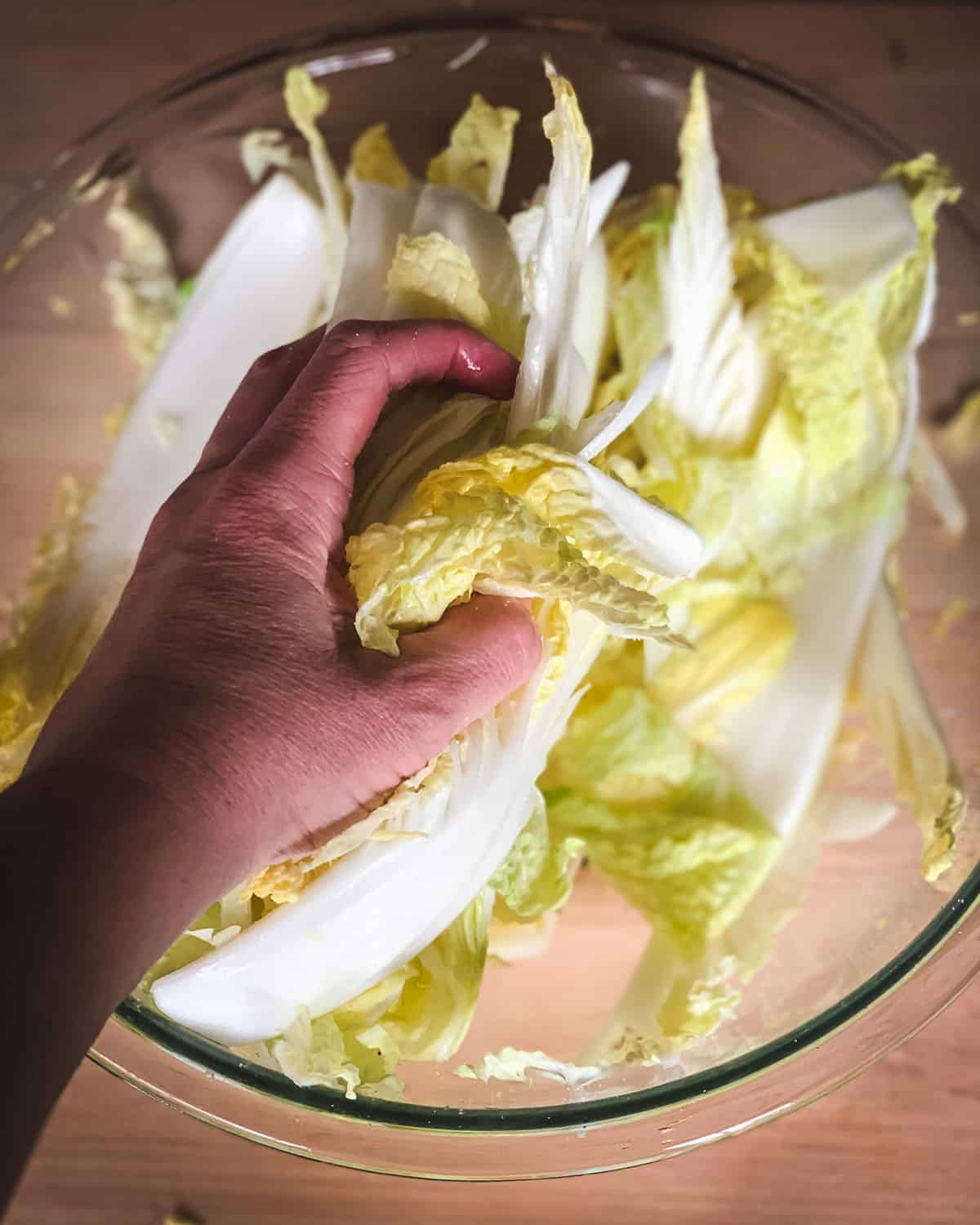 a hand massaging the salt into the cabbage