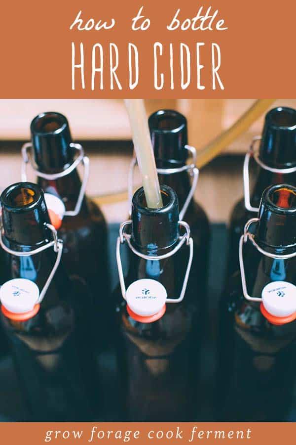 bottling hard cider