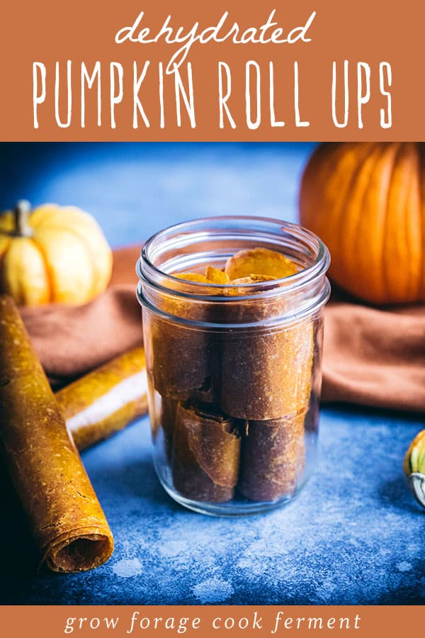 dehydrated pumpkin pie leather roll ups in a jar