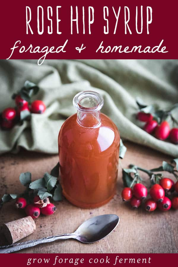 foraged and homemade rose hip syrup