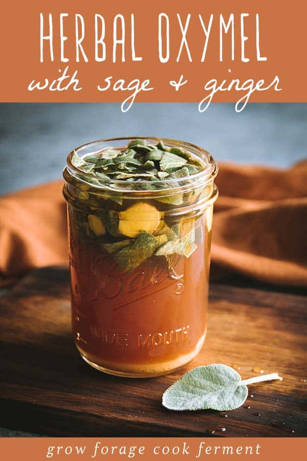 a jar of herbal oxymel with sage and ginger