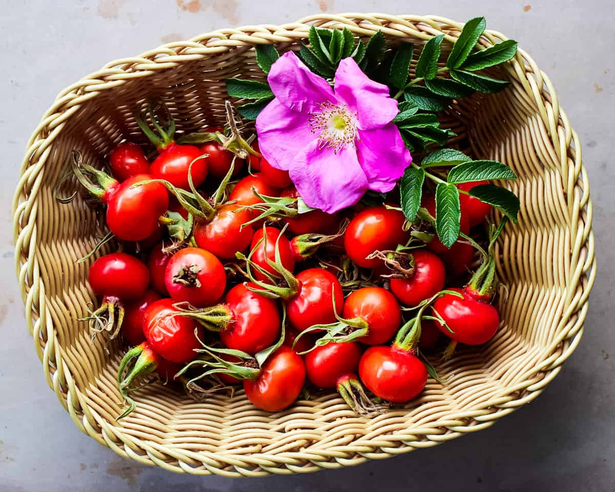 a basket of rose hips and a single wild rose flower