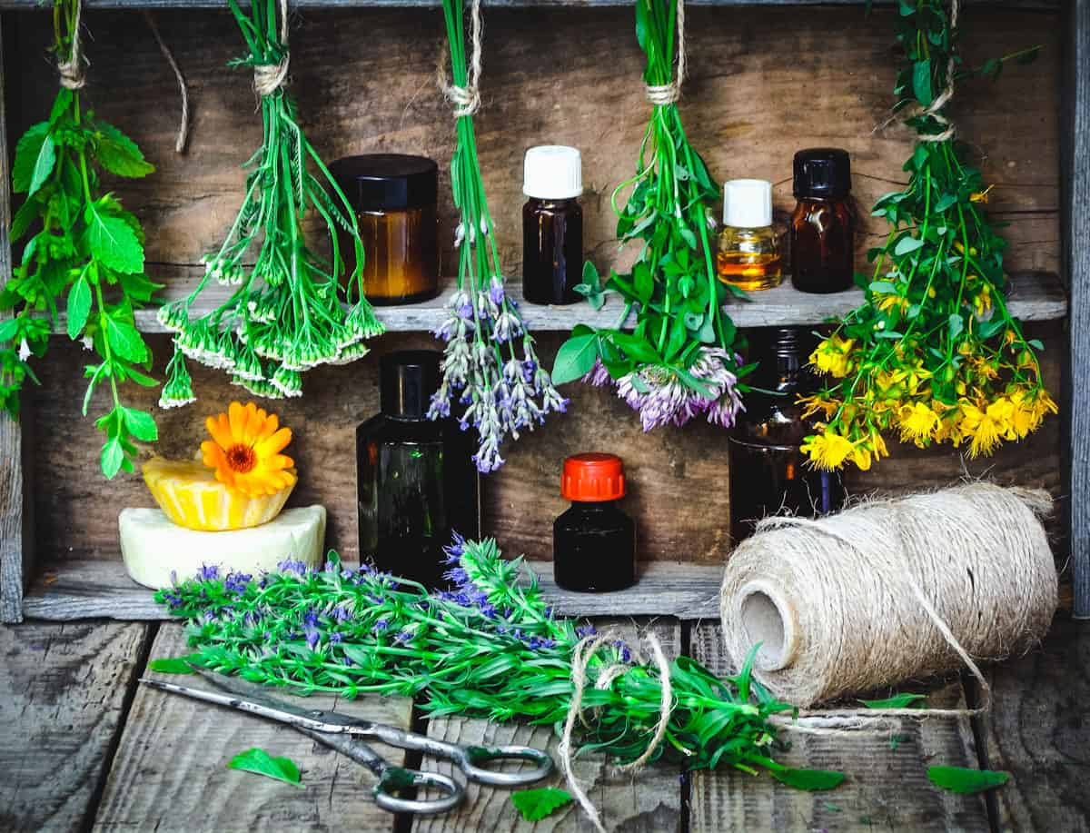 bundles of herbs hanging near tinctures and other bottles