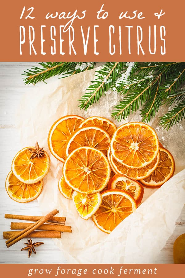 12 ways to use and preserve citrus
