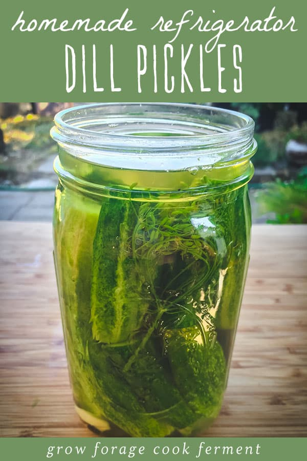 a quart jar of homemade refrigerator dill pickles